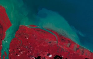 Côte de la Guyane au niveau de l'embouchure de la Mana en 2007