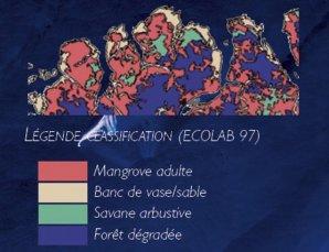 Classification des milieux de la côte du Para à l'Est de Bélem